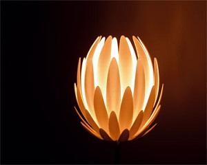 Надомна работа: Органични лампи