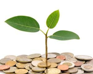 Финансовата стабилност на фирмата – оценка и мониторинг