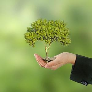 Ускоряване на началното развитие на фирмите посредством нов фонд със 100 млн. лв.